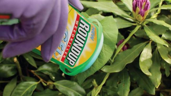 Η βιομηχανία φυτοφαρμάκων που δικάζεται για πρόκληση καρκίνου σε χιλιάδες ανθρώπους