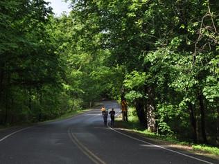 Rhinebeck Hudson Valley Half Marathon Race Report