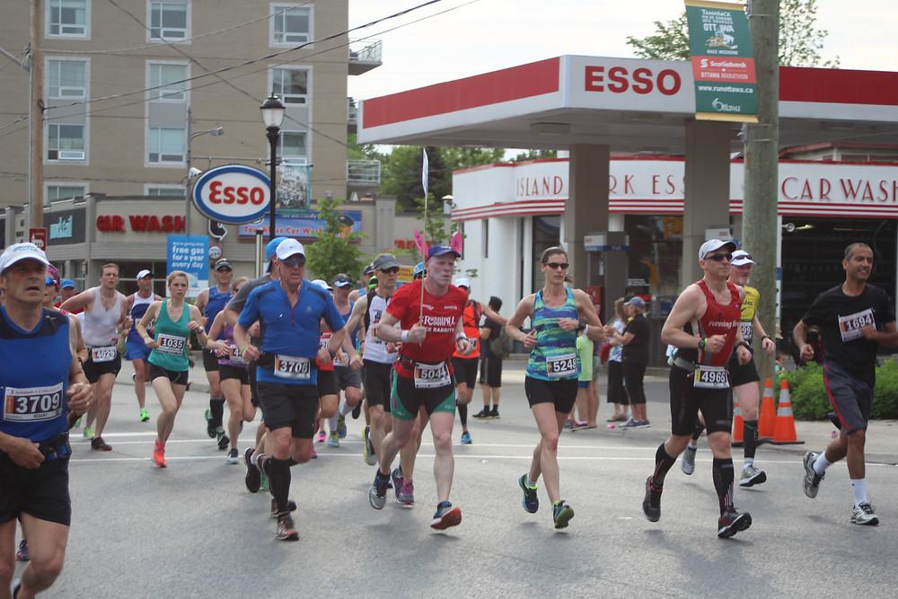 Ottawa race weekend pace bunnies
