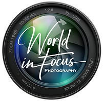 World-In-Focus-Logo.png