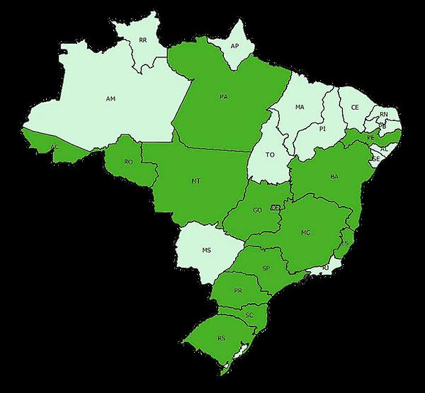 area-atuação-machado2019.png