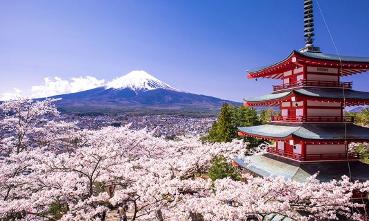 טיול ליפן - הסטריאוטיפים מתגשמים
