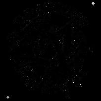 BTT logo transparent.png