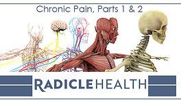 Radicle Health Cannabis and Chronic Pain Course
