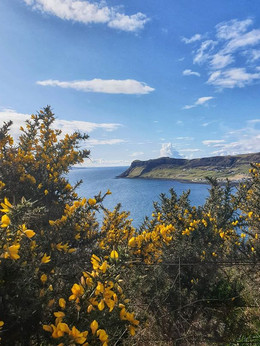 View whilst walking to Uig
