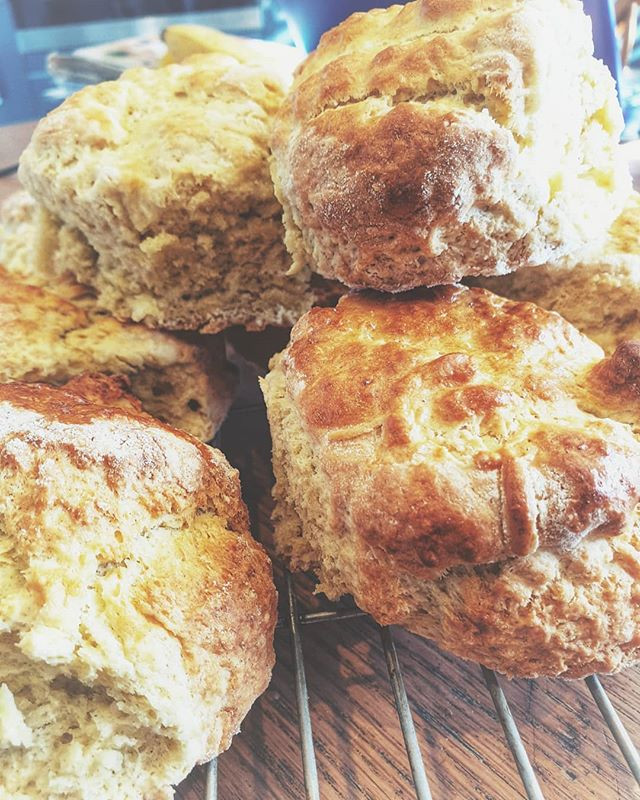 The humble Scone