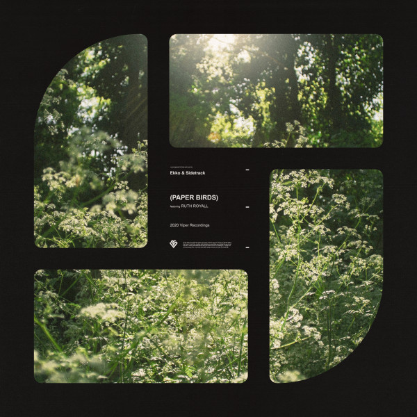 Ekko & Sidetrack ft Ruth Royall - Paper Birds