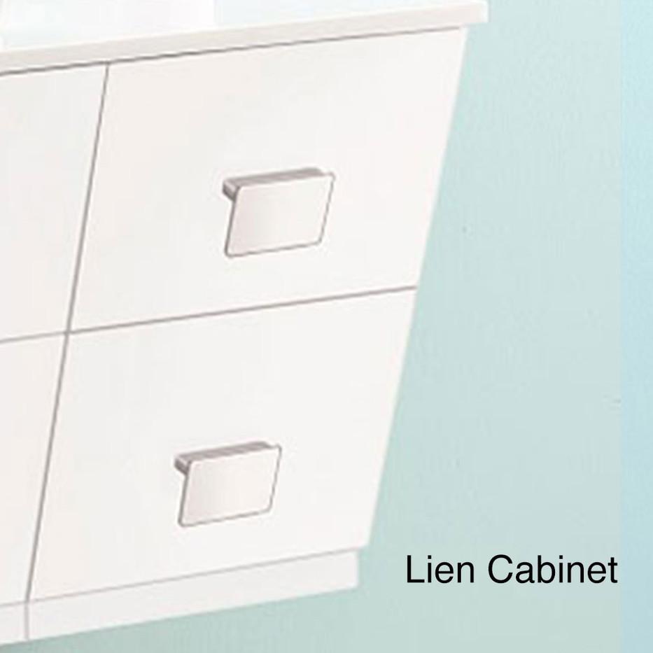 AADI-3601 Lien Cabinet