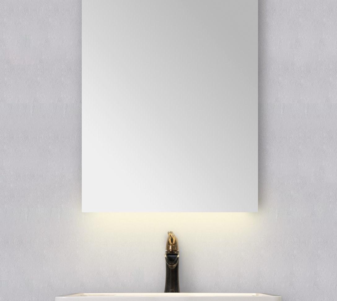 EC810-6 Mirror