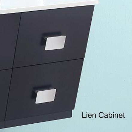 AADI-6006 Lien Cabinet