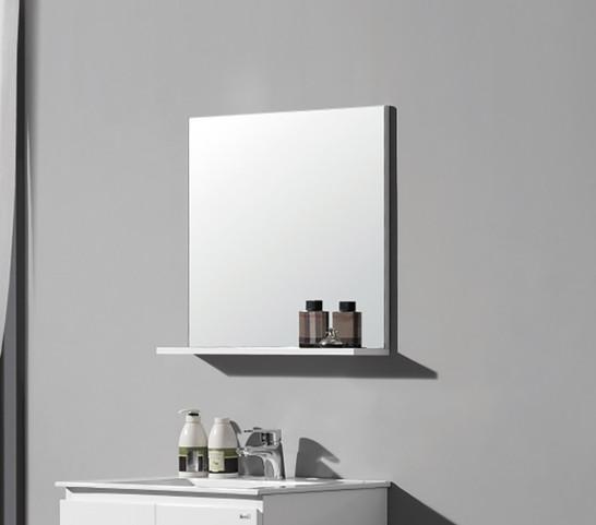 EC806-8 Mirror