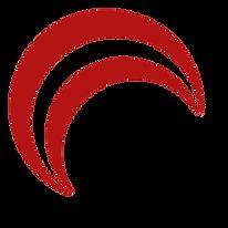 DPS Logo 1.png