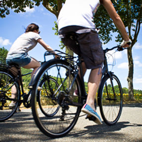 Cycling tours and wine tasting France