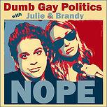 DumbGayPolitics.jpg