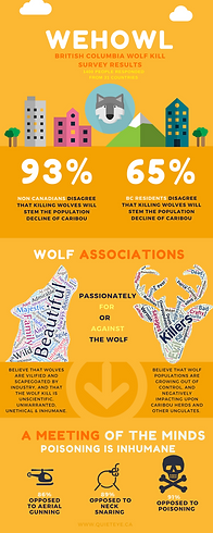 Infographic showing early results of the British Columbia wolf kill survey