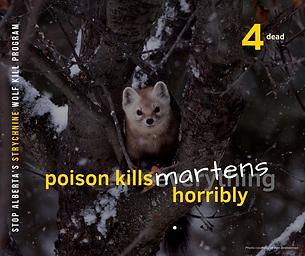4 Martens.png