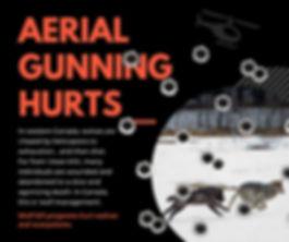 Aerial-gunning.jpg