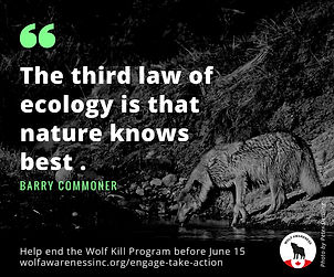 Wolf Awareness Meme - The third law of ecology is that nature knows best