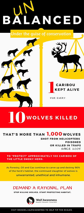 Unbalanced - the unethical and inhumane wolf kill infographic.