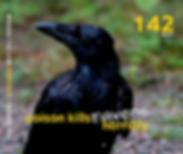 142 Ravens.png