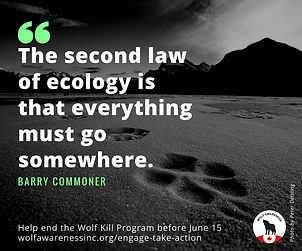 Wolf Awareness Meme - The second law of ecology is that everything must go somewhere