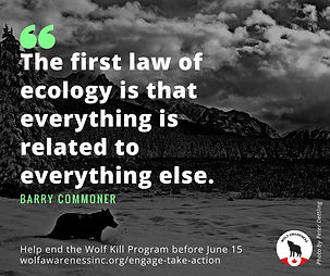 Wolf Awareness Meme - The first law of ecology is that everything is related to everything else