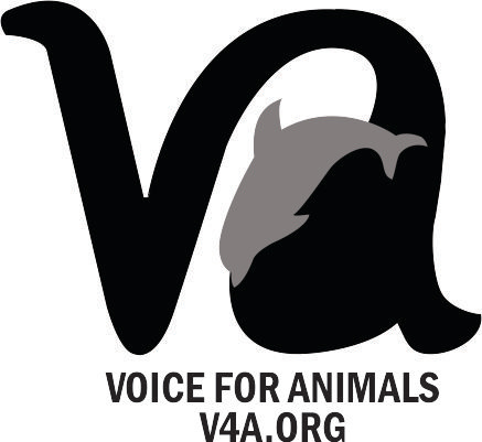 Voice for Animals logo