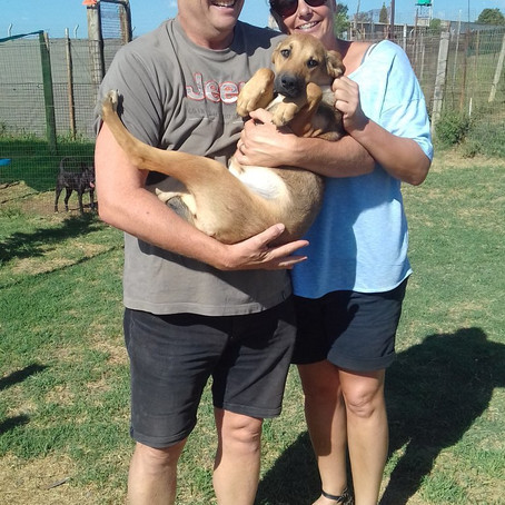Another welcome adoption yesterday!!! Whoop