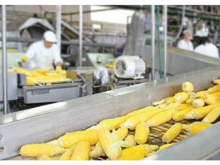 Colour-coded maintenance safety in the food industry with Lockout/Tagout