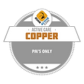 Roan_Active_Care_Badges-COPPER.png