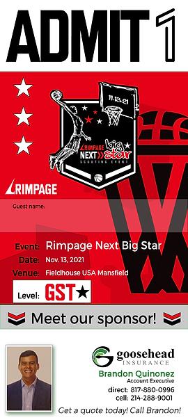 Next Big Star ticket-guest.png