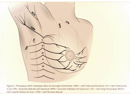 Chirurgie des cancers du sein : diminuer (ou supprimer) la douleur