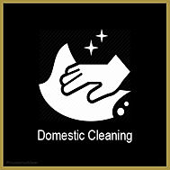 Domestic Cleaning.jpg