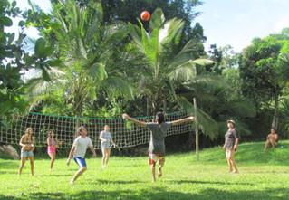 Volleyball mesh