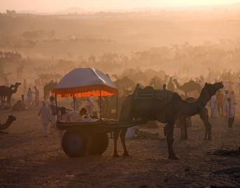 Sunset, Pushkar, India