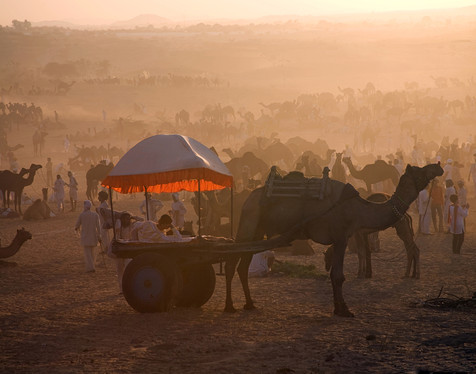 Sunset, Pushkar, India