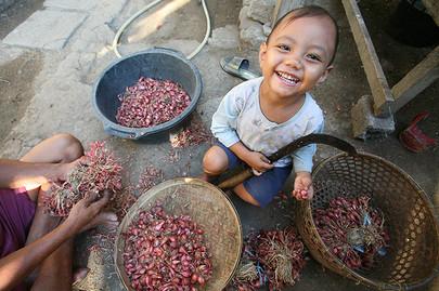 Wayan with a Sickle, Bali