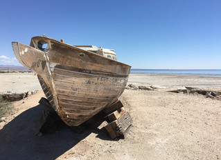 Dick & Jane at The Salton Sea, Part 1