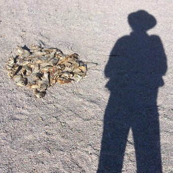 Self Portrait with Dead Fish, Salton Sea, CA