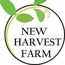 new-harvest.jpg