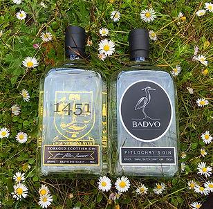 Both bottles.jpg