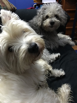 Toby & Abby