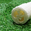 Thumbnail: Luffa Sponge
