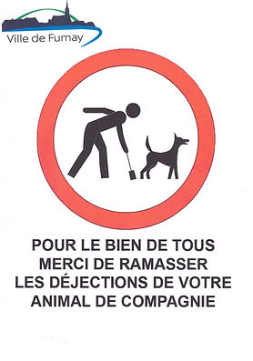 affiche chiens.jpg