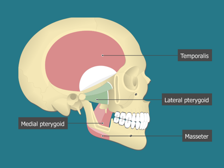 How to Open and Close Your Jaw the Right Way!