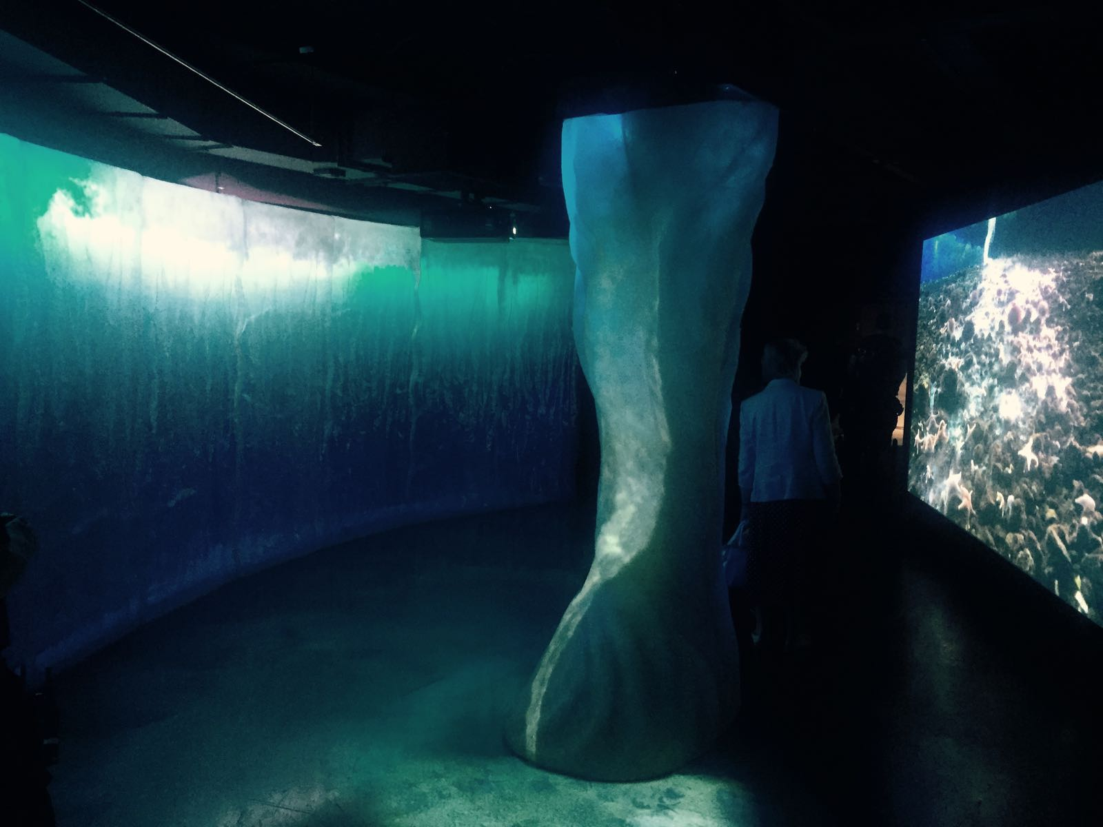 Frozen Planet installation Sea Life