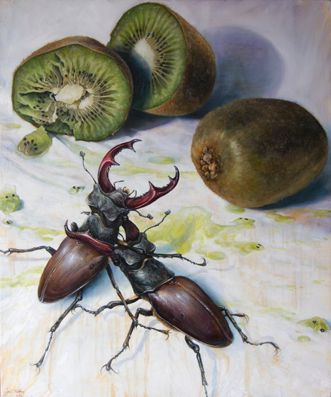 Kiwis and Stag Beetles