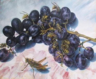 Grapes and Yellowjackets