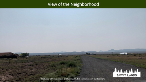 View of the Neighborhood.png