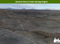 General View in Cedar Springs Region.jpe